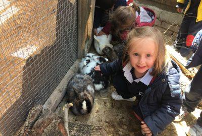 Excursión Infantil a la Granja Escuela
